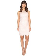 Adrianna Papell Sleeveless Sequin Guipure Lace Sheath Dress Blush Women's Dress Pink