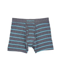 Kenneth Cole Reaction Boxer Brief Caribbean Sea Men's Underwear Blue
