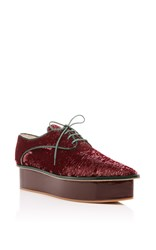 Delpozo Platform Derby Lace Up Burgundy