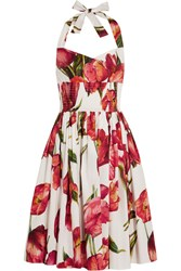 Dolce And Gabbana Floral Print Cotton Poplin Dress Red