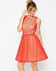 Little Mistress Skater Dress With Lace Overlay Red