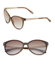 Fossil 56Mm Cat's Eye Sunglasses Brown