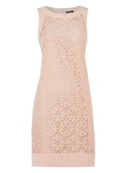 Dorothy Perkins Roman Originals Pink Sleeveless Lace Dress