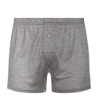 Zegna Silk Trunks Male Grey