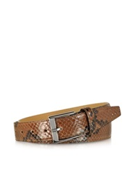 Forzieri Brown Python Leather Men's Belt Cognac