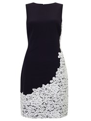 Ralph Lauren Lace Trim Fit And Flare Dress Navy Ivory