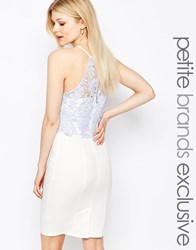 Paper Dolls Petite Lace Bodice Halter Pencil Dress White
