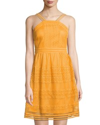 Tahari By Arthur S. Levine Honey Halter Neck Lace Dress Yellow