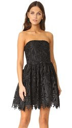 Alice Olivia Daisy Party Dress Black