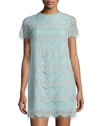 Cynthia Steffe Marley Short Sleeve Scalloped Lace Shift Dress Blue