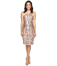 Adrianna Papell Sequin Panel Illusion Cocktail Dress Rose Gold Women's Dress