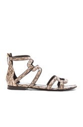 Pierre Hardy Kaliste Sandal In Neutrals Black Animal Print
