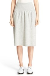 Joseph Drop Yoke Boiled Wool Skirt Gray