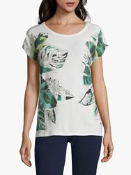 Betty And Co. Graphic Leaf Print Top Cream Mint