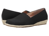 Fitzwell Alice Black Solid Fabric Women's Shoes