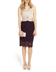 Phase Eight Coralie Lace Dress Champagne