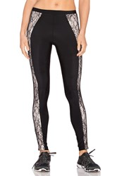 Blue Life Lace Contrast Legging Black