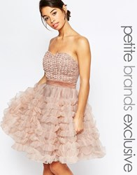 True Decadence Petite Rosebud Bodice Layer Prom Dress Pink