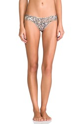 Hanky Panky Leopard Noveau Low Rise Thong Brown