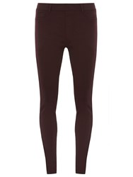 Dorothy Perkins Eden Ultra Soft Jeggings Purple