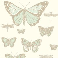 Cole And Son Butterflies And Dragonflies Wallpaper 103 15065