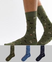 Barbour Dog 3 Pack Sock Gift Box In Multi