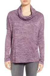 Caslon Cowl Neck Tunic Petite Purple