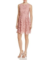 Cynthia Steffe Cece By Claiborne Lace Dress Rose Pearl