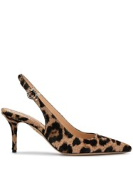 Charlotte Olympia Pointed Leopard Print Pumps Neutrals