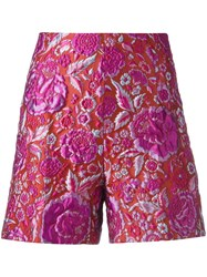 Ermanno Scervino Jacquard Shorts Purple