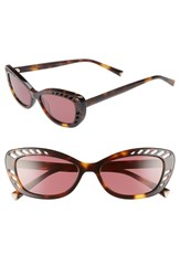 Kendall Kylie Extreme 55Mm Cat Eye Sunglasses Tortoise