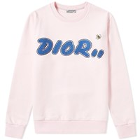 Christian Dior Homme X Kaws Towelling Bee Crew Sweat Pink