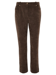 Viyella Petite Straight Trousers Bitter Chocolate