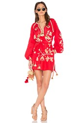 March 11 Long Sleeve Flora Embroidered Mini Dress