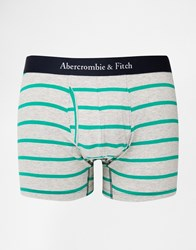 Abercrombie And Fitch Stripe Trunks Grey Blue