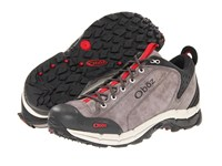 Oboz Arete Low Charcoal Men's Shoes Gray