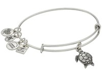 Alex And Ani Charity By Design Turtle Rafaelian Silver Bracelet