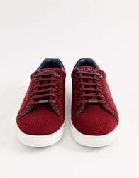 Ted Baker Werill Trainers In Burgundy Red