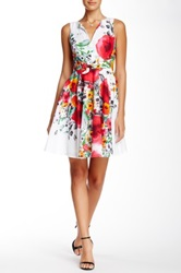 Eva Franco Keir Dress Multi