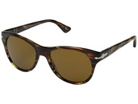 Persol 0Po3134s Striped Green Striped Green Brown