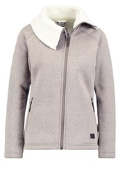 Jack Wolfskin Terra Nova Fleece Grey