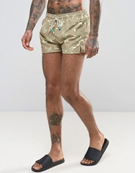 Oiler And Boiler Chevy Swim Short With Turtle Print In Green Khaki