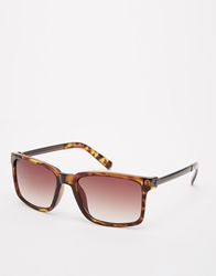 French Connection Wayfarer Sunglasses Brown