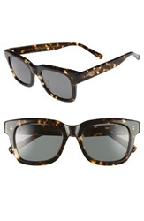 Raen Women's Gilman 52Mm Sunglasses Brindle Tortoise