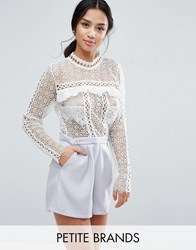True Decadence Petite Lace Top Romper With Eyelet Detail Multi