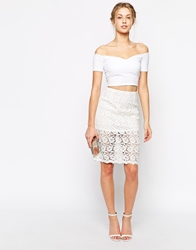 True Decadence Sheer Lace Pencil Skirt Cream