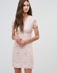 Darling Short Sleeve Lace Shift Dress Nude Beige