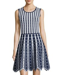 Pink Tartan Hexagon Knit Scallop Hem Fit And Flare Dress Blue White