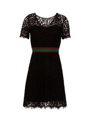 Morgan Elasticated Waist Lace Dress Black