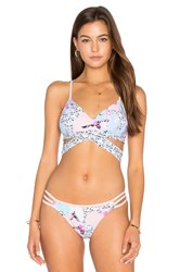 Seafolly Ocean Rose Wrap Bralette Pink